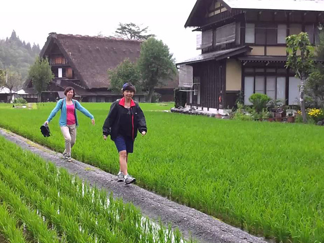 shirakawago-village