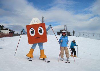 1 Day Mt. Hakodate Ski & Snow Play by Limon Bus