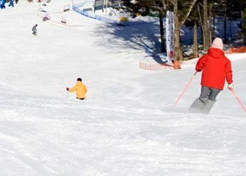 Kanto Buffet 1 Day Karuizawa Ski