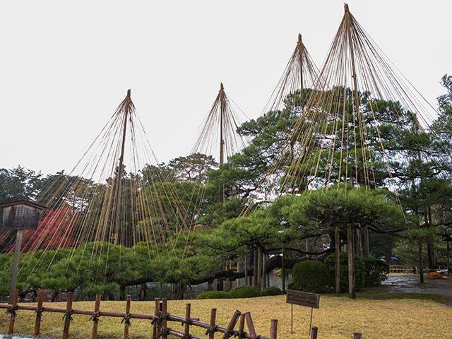 Kanazawa Kenrokuen ③
