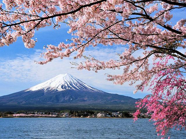 Mt. Fuji【pl_ID4833454】_ small