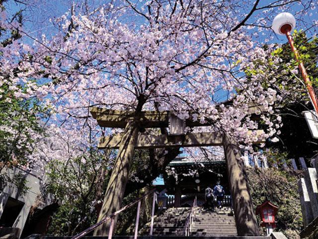 FUK NISHI PARK