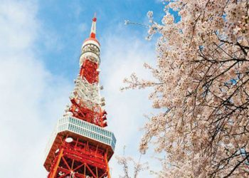 (Pagi) Tokyo Half Day Tour by Japan Holiday Tours