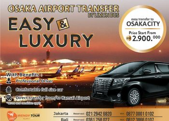 Airport Transfer by Luxury Car (Osaka)