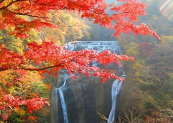 1 DAY IBARAKI AUTUMN LEAVES TOUR BY CLUB TOURISM