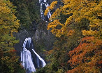 1 DAY AUTUMN HIGASHIKAWA & FURANO TOUR BY CLUB TOURISM